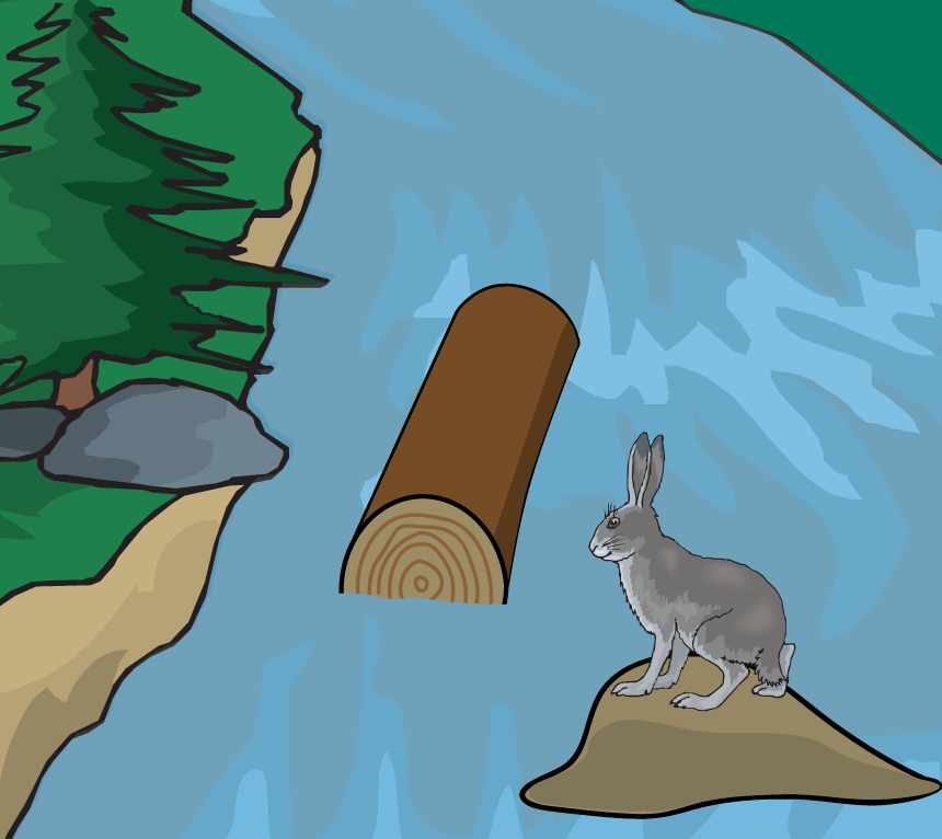 The Rabbit hops Across the River