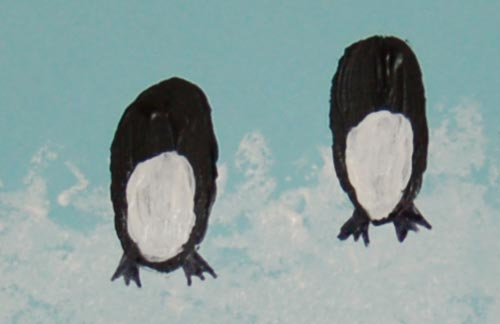 Draw the penguins' feet