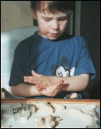 Child playing with dough
